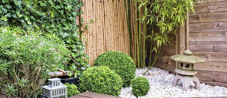 Installer un jardin d\'hiver dans votre maison