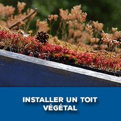 Installer un toit végétal