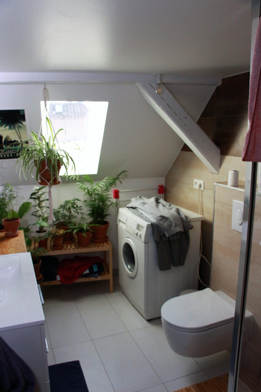Création d'un appartement sous les combles à Strasbourg (67)