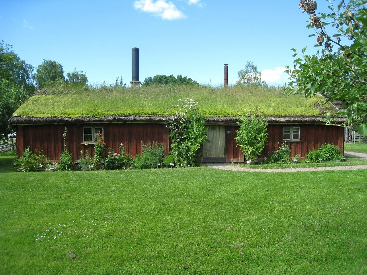 Tout savoir sur les toits végétalisés