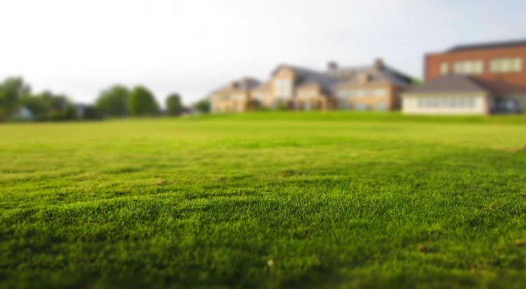 Le bornage d'un terrain est-il obligatoire ?
