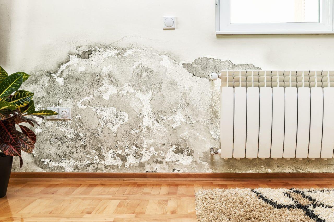 murs humides rénovation murs