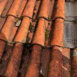 rénovation toiture avant travaux tuiles cassées La Roche-sur-Yon