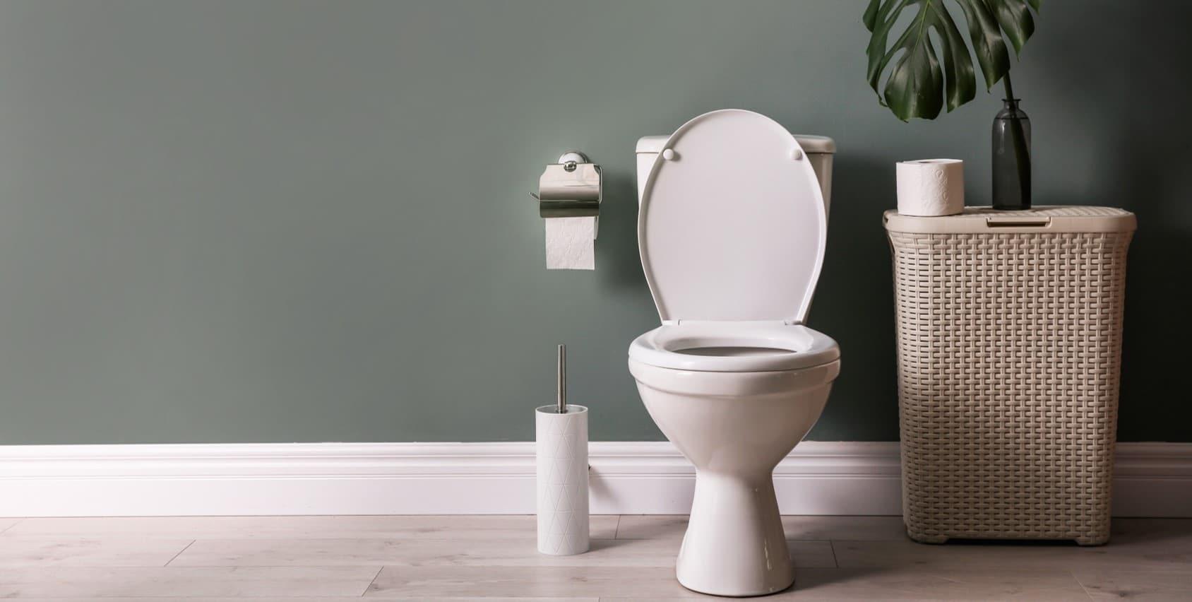 Installer et choisir ses WC