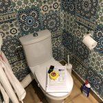 rénovation salle de bain WC carrelage avant travaux Saint-Ismier
