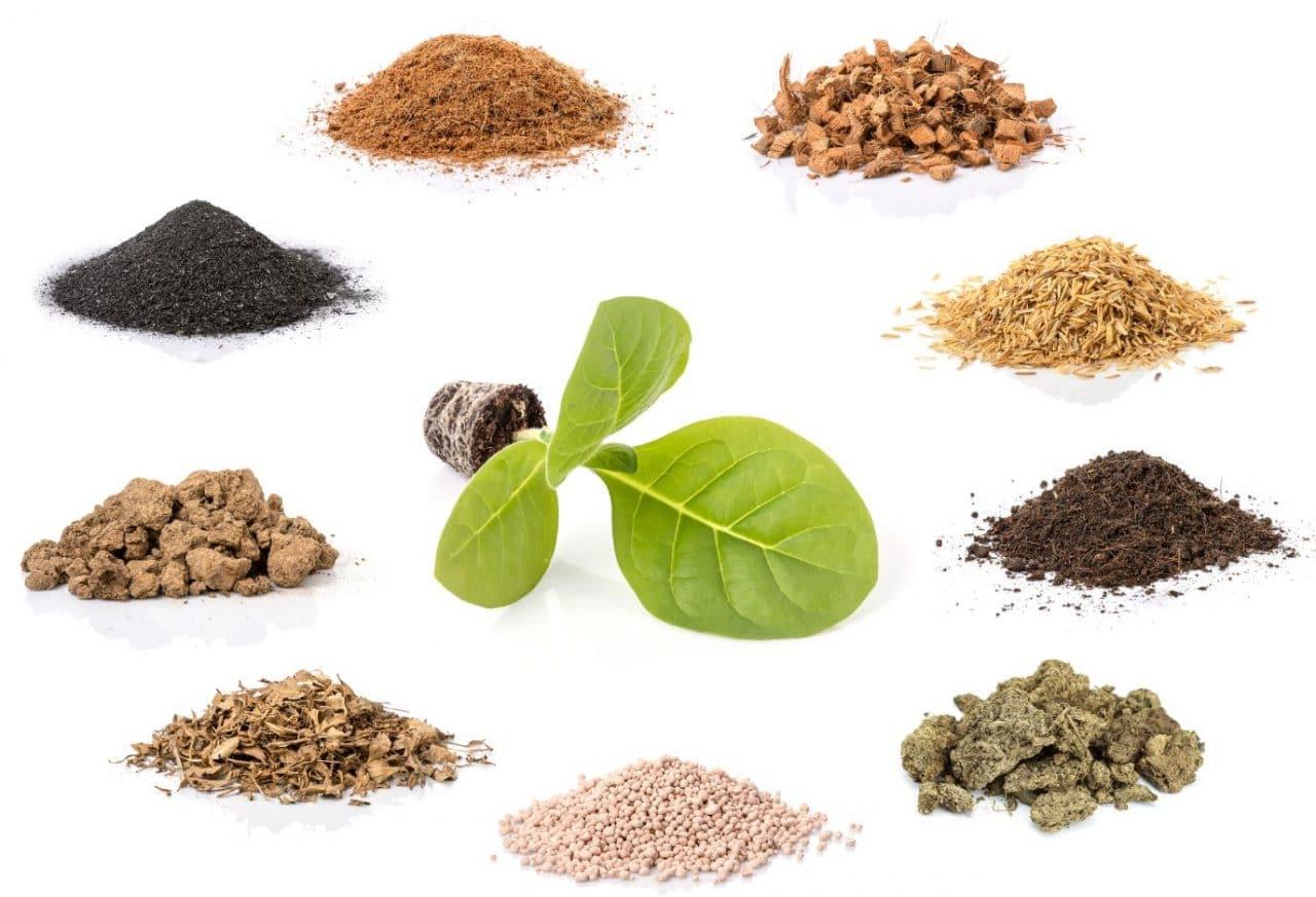 différents types de matériaux biosourcés - illiCO travaux