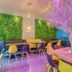 rénovation restaurant parement végétalisé lumière ambiance plafond suspension luminaire Lyon 6