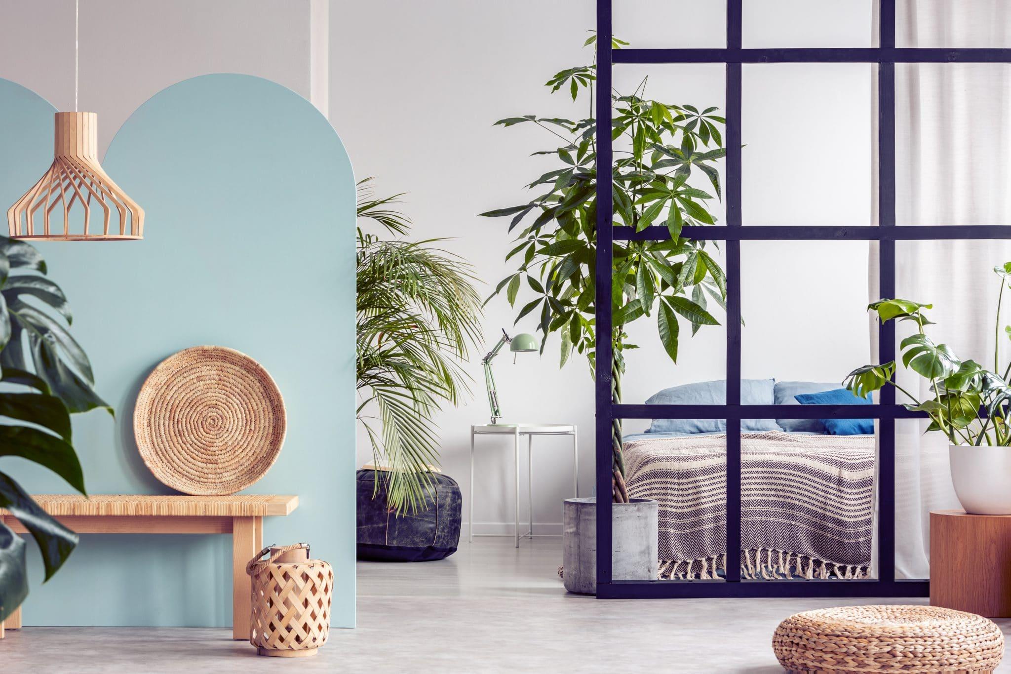 Rénovation d'Appartement à Angers (49)