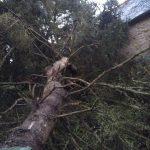Sinistre sur la toiture - Rénovation de maison suite à un sinistre à Pléguien (22)
