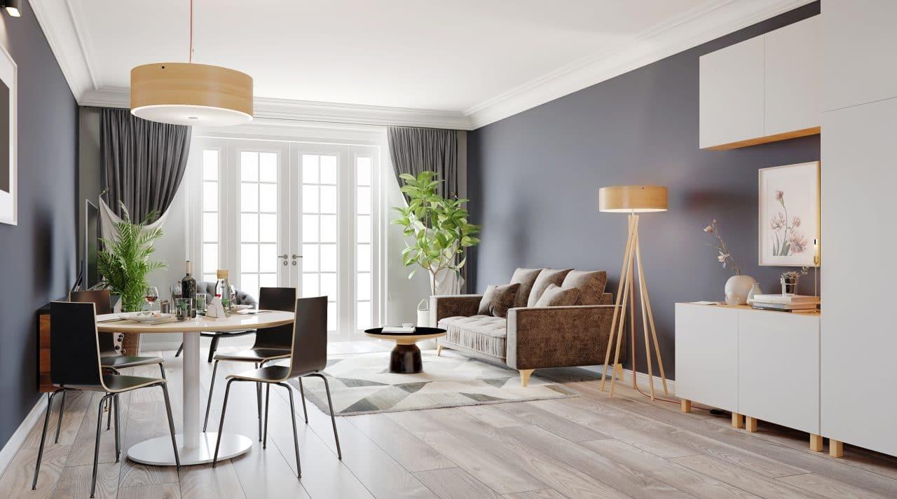 Renovation appartement Cosne-sur-Loire : renovation sejour